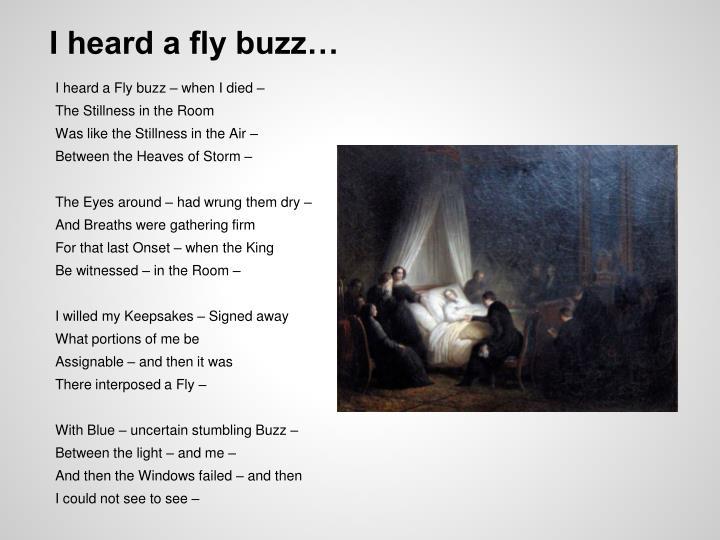 I heard a fly buzz…