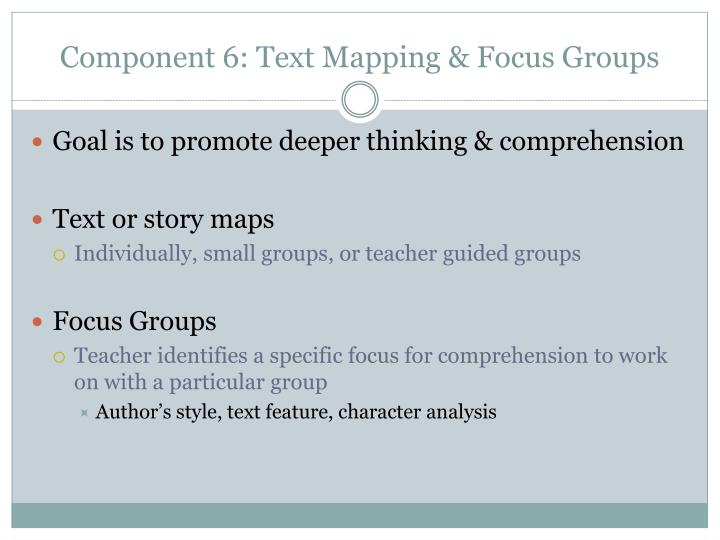 Component 6: Text Mapping & Focus Groups