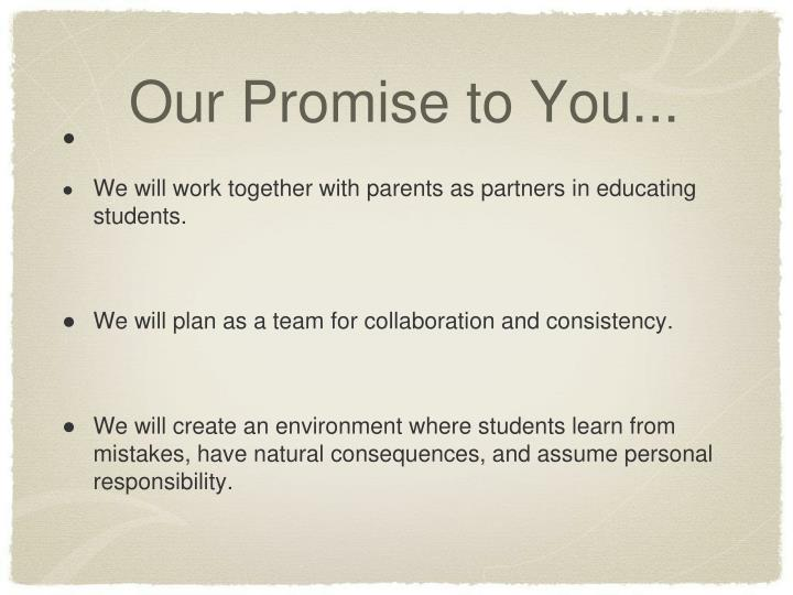 Our Promise to You...