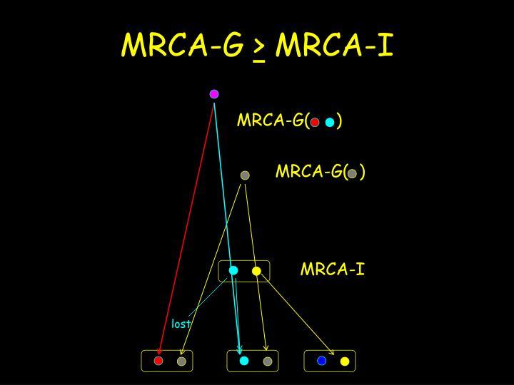 MRCA-G(     )