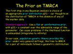 the prior on tmrca