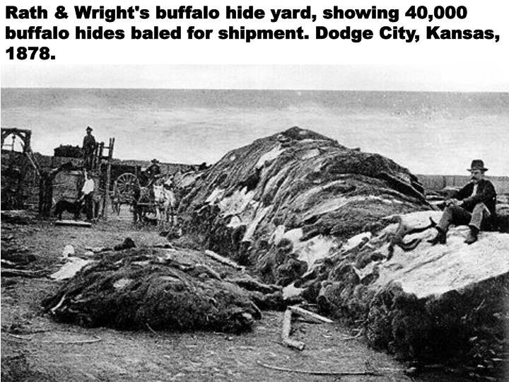 Rath & Wright's buffalo hide yard, showing 40,000 buffalo hides baled for shipment. Dodge City, Kansas, 1878.