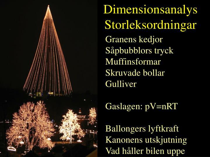 Dimensionsanalys