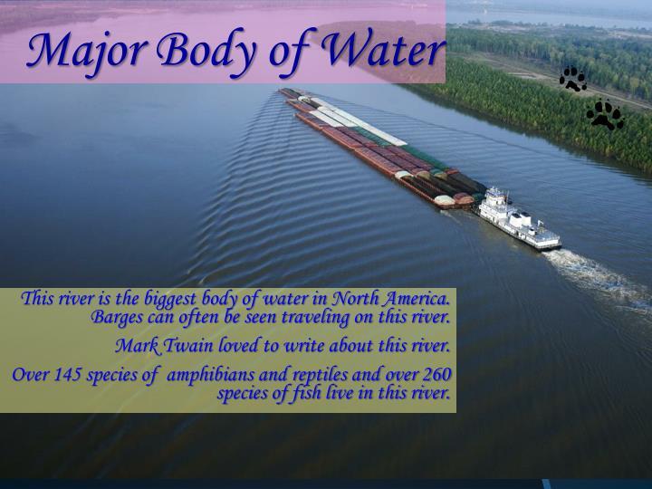 Major Body of Water
