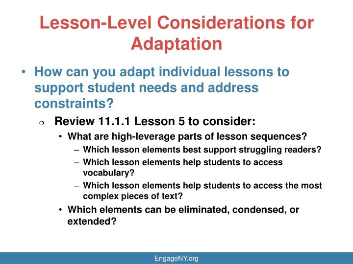 Lesson-Level Considerations for Adaptation