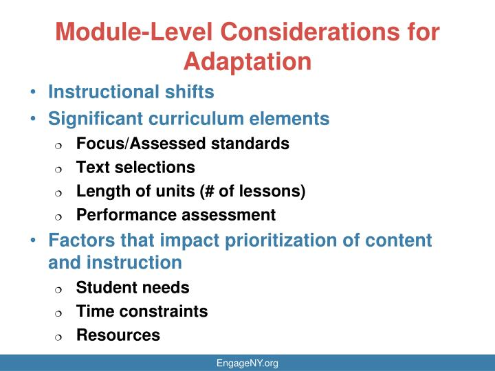 Module-Level Considerations for Adaptation
