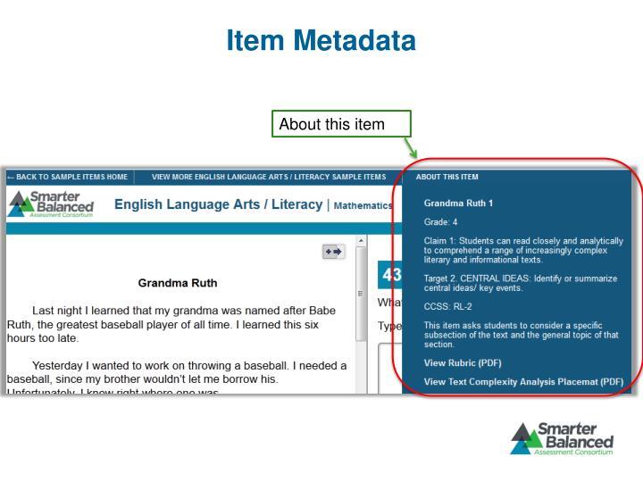 Item Metadata