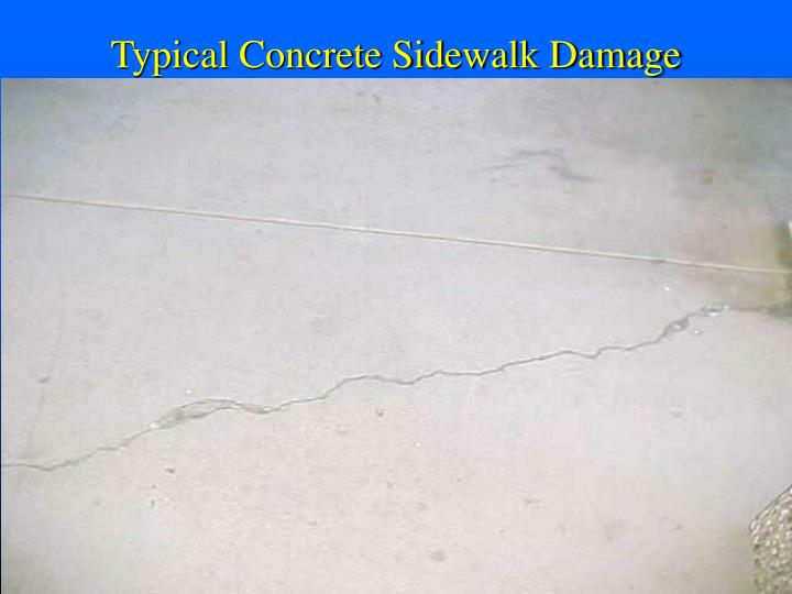 Typical Concrete Sidewalk Damage