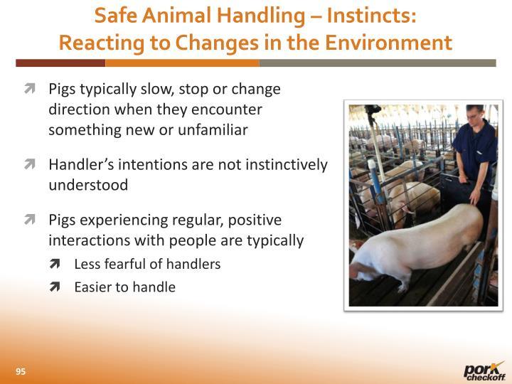 Safe Animal Handling – Instincts: