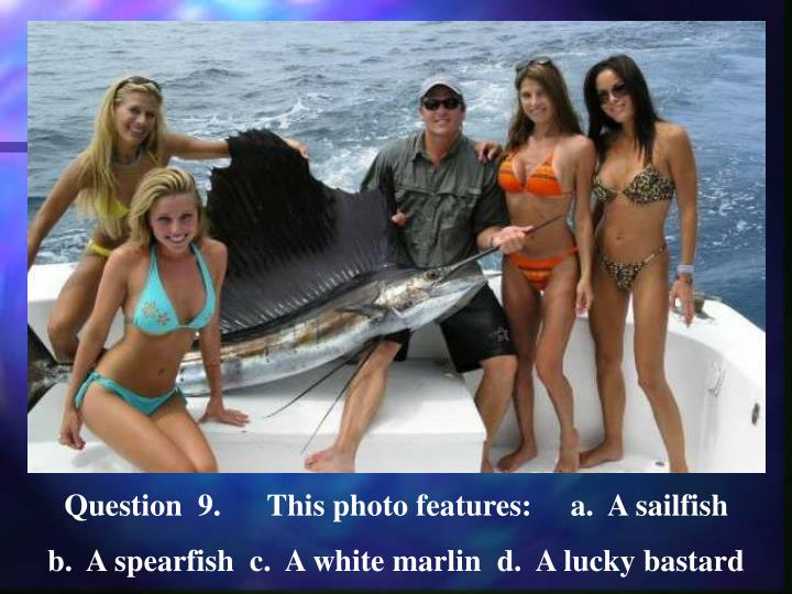 Question  9.      This photo features:     a.  A sailfish