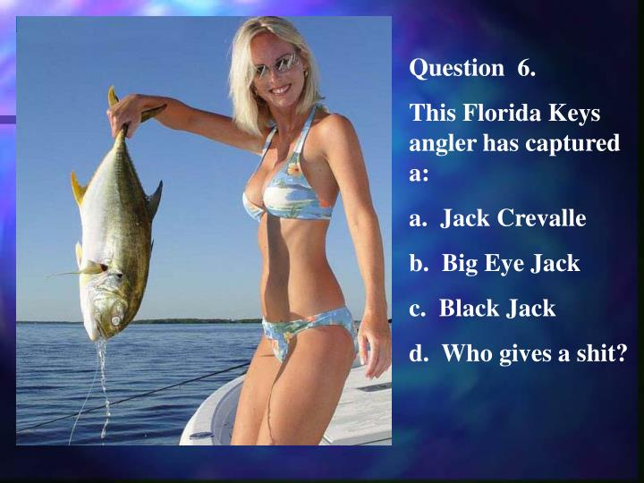 Question  6.