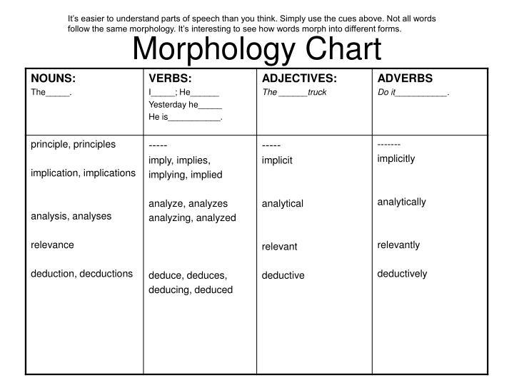 Morphology Chart