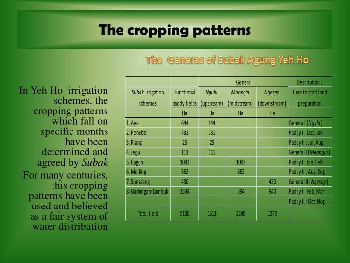 The cropping patterns