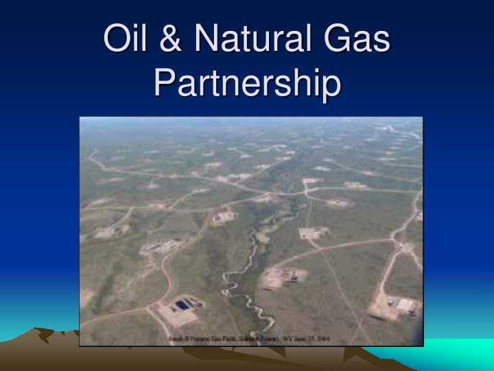 oil natural gas partnership
