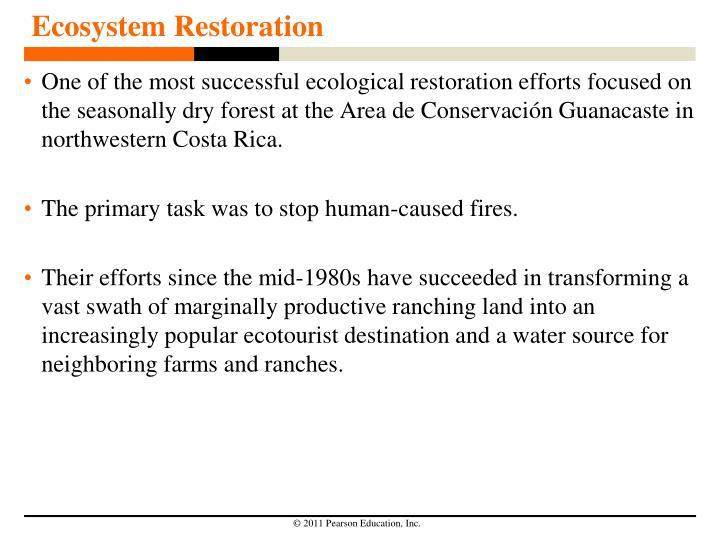Ecosystem Restoration