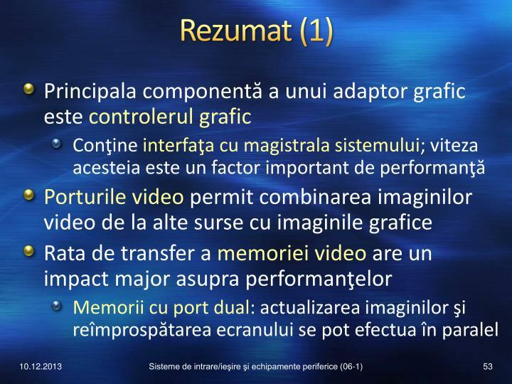 Rezumat (1)