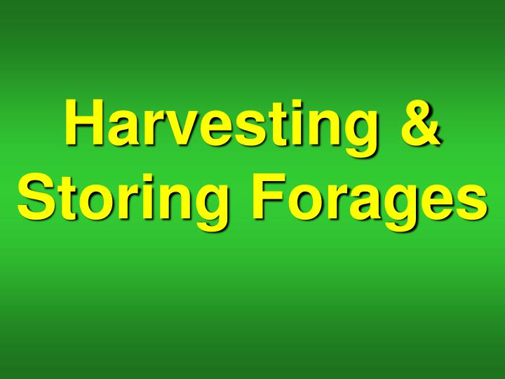 Harvesting storing forages