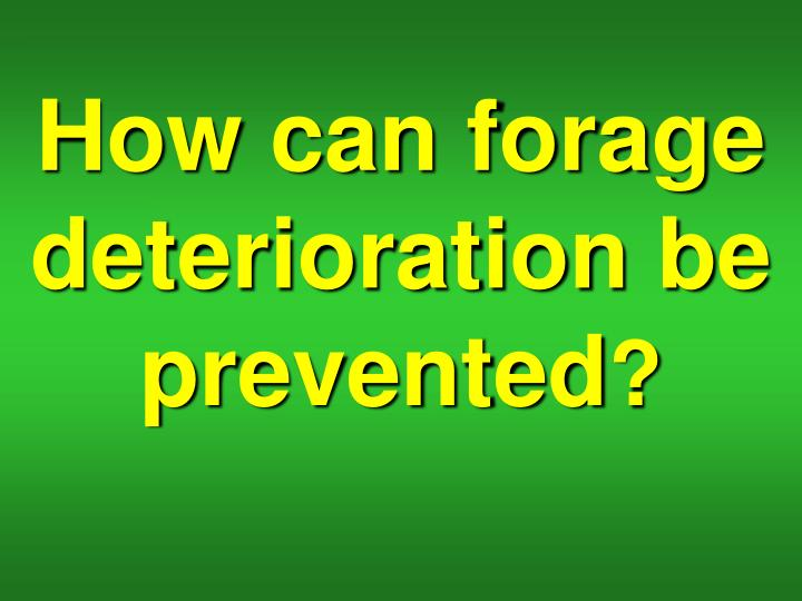 How can forage deterioration be prevented