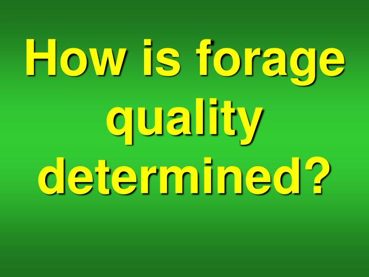 How is forage quality determined?