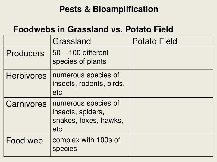 Pests &