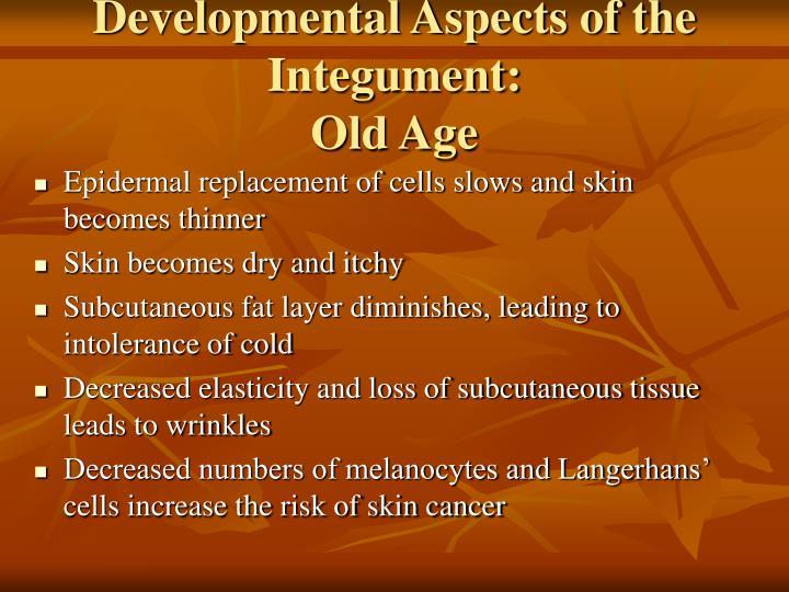 Developmental Aspects of the Integument: