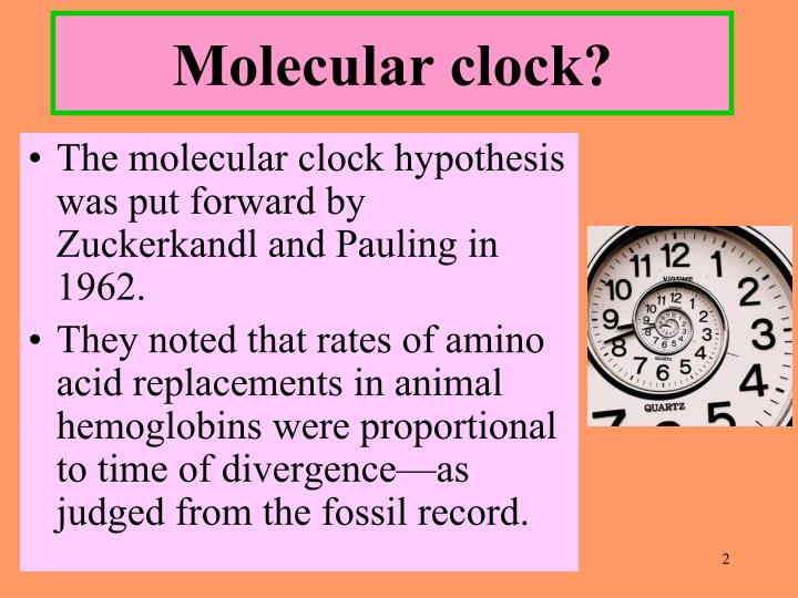 Molecular clock?