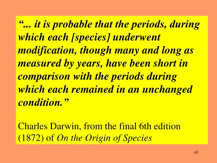 """""""... it is probable that the periods, during which each [species] underwent modification, though many and long as measured by years, have been short in comparison with the periods during which each remained in an unchanged condition."""""""
