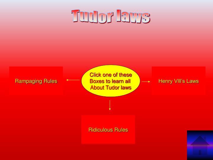 Tudor laws