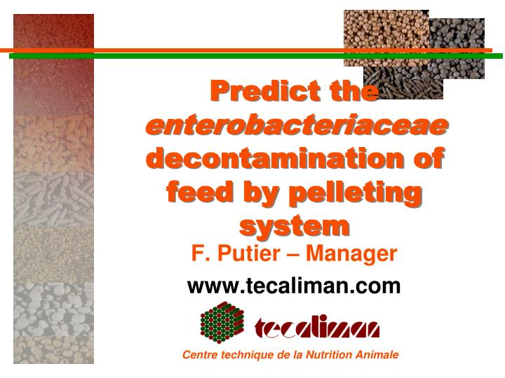 Predict the enterobacteriaceae decontamination of feed by pelleting system
