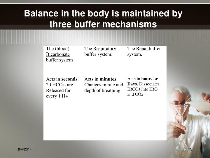 Balance in the body is maintained by three buffer mechanisms