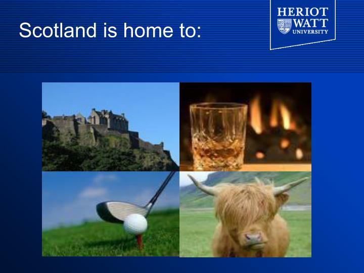 Scotland is home to: