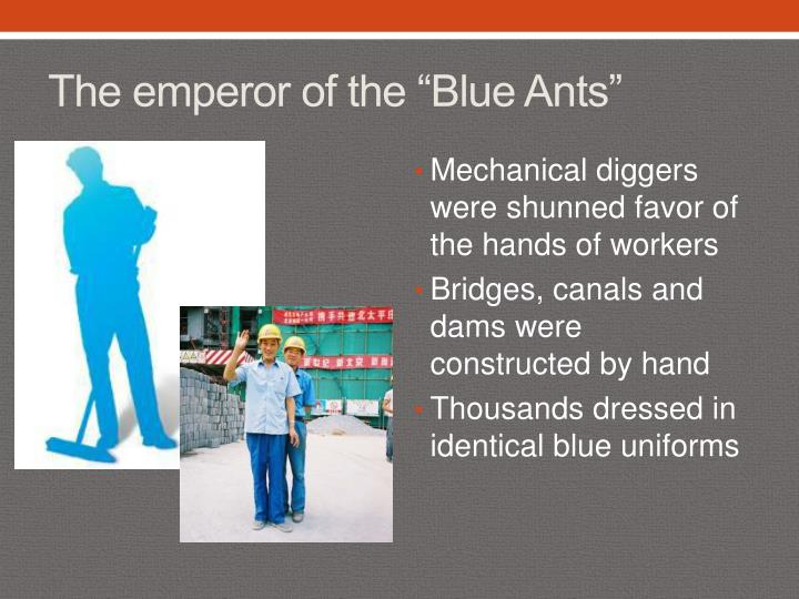 "The emperor of the ""Blue Ants"""