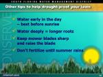 other tips to help drought proof your lawn