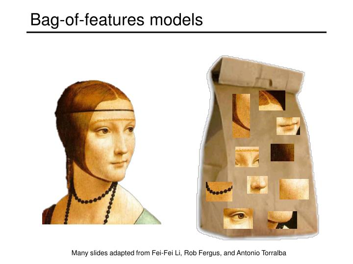 bag of features models