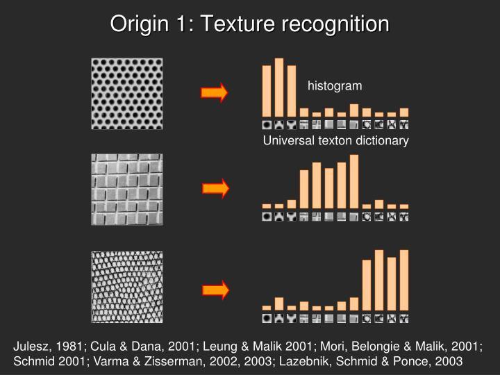 Origin 1: Texture recognition