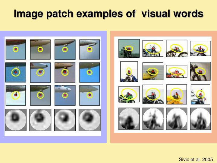 Image patch examples of  visual words