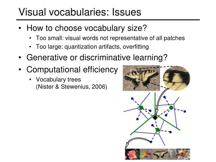 Visual vocabularies: Issues