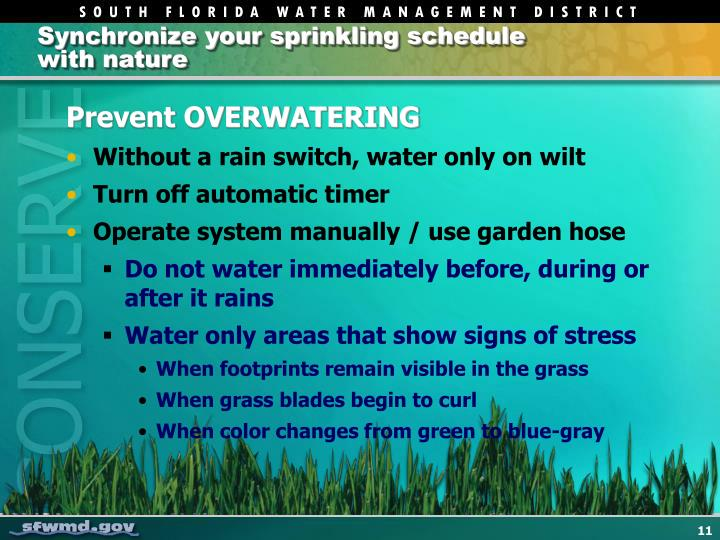 Synchronize your sprinkling schedule with nature