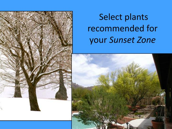 Select plants recommended for your