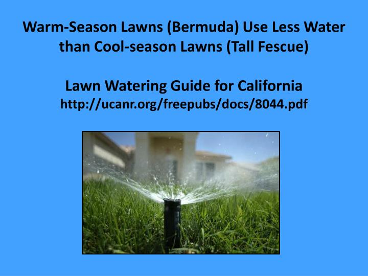 Warm-Season Lawns (Bermuda) Use Less Water than Cool-season Lawns (Tall Fescue)