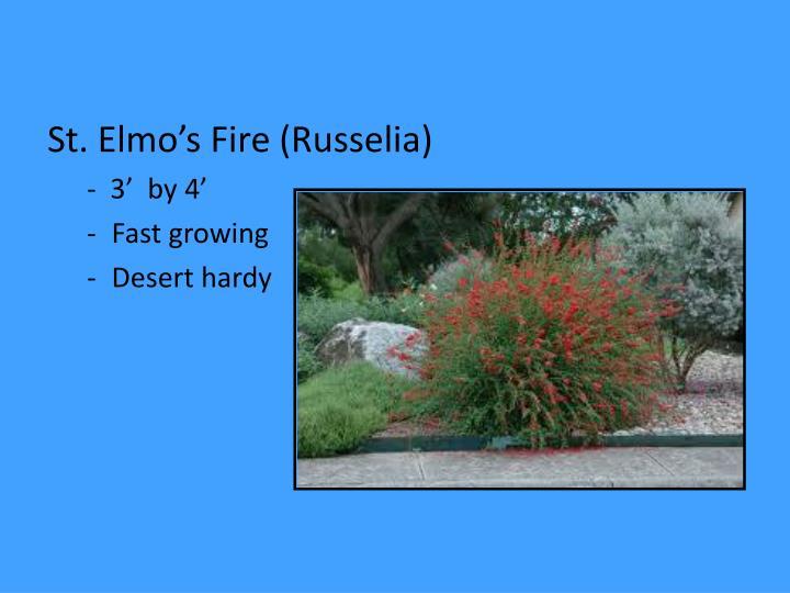 St. Elmo's Fire (