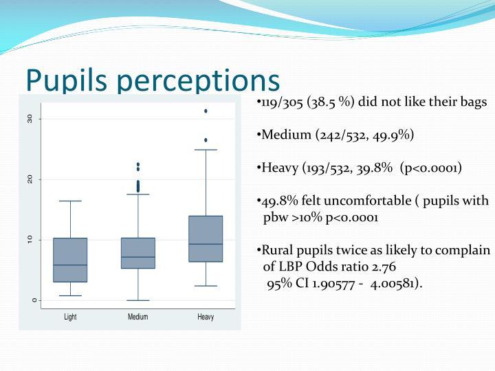 Pupils perceptions