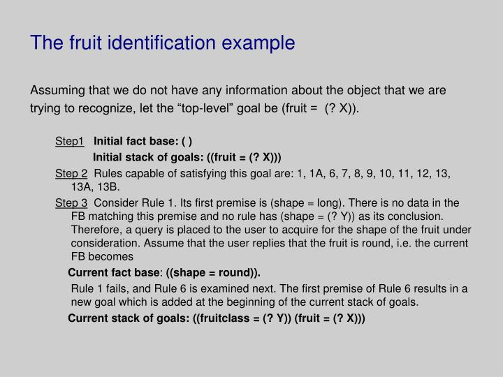The fruit identification example