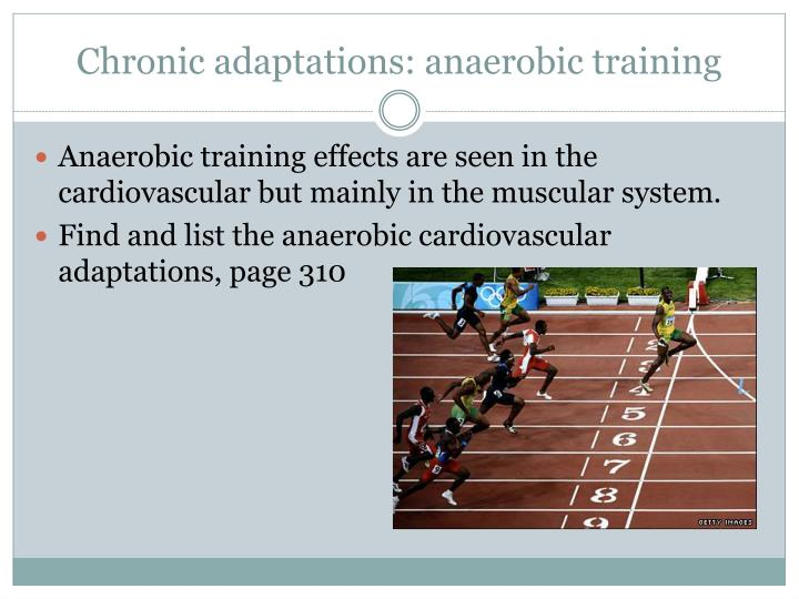 Chronic adaptations: anaerobic training