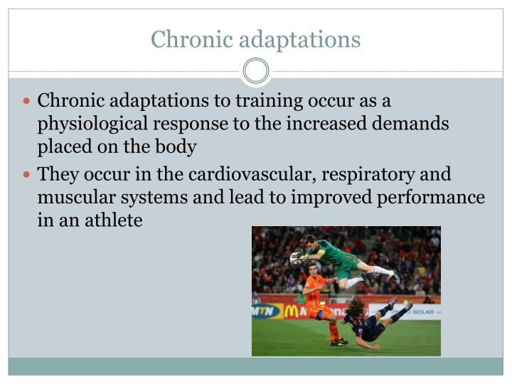 Chronic adaptations