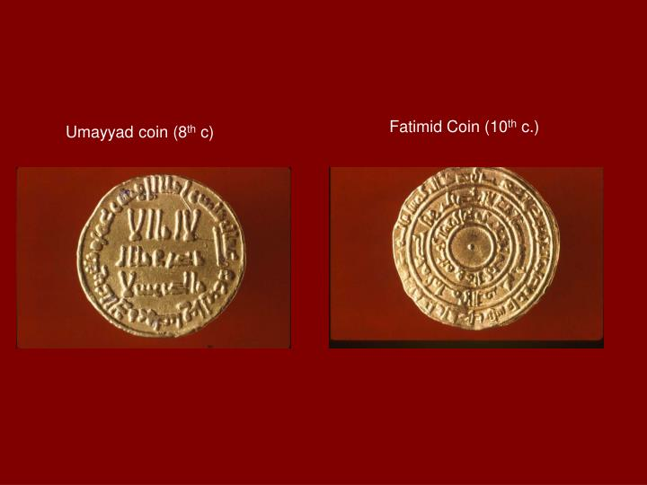 Fatimid Coin (10