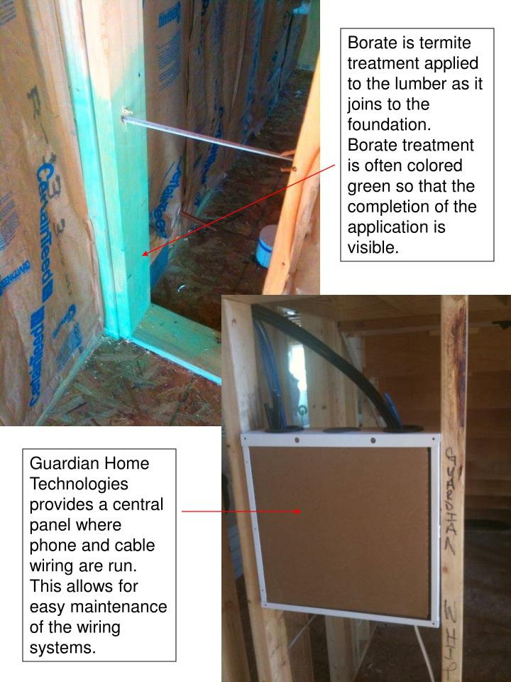 Borate is termite treatment applied to the lumber as it joins to the foundation.  Borate treatment is often colored green so that the completion of the application is visible.
