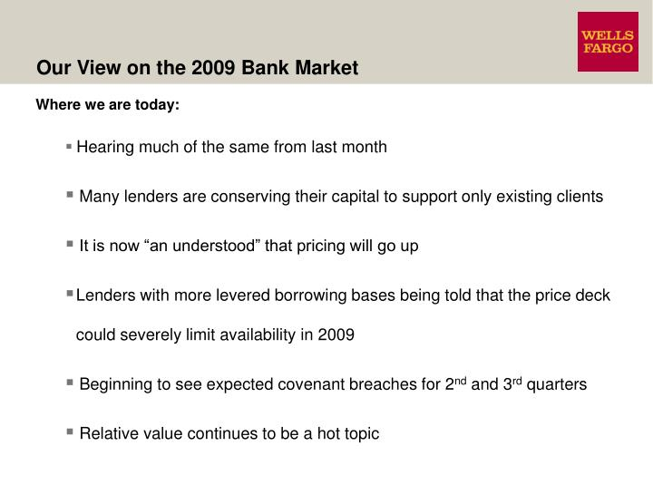Our View on the 2009 Bank Market