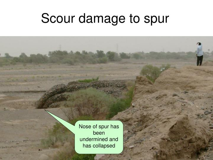 Scour damage to spur