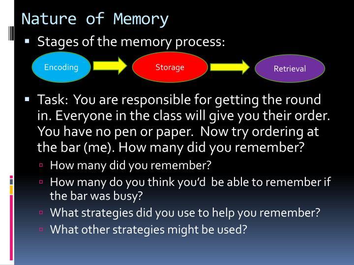 Nature of Memory